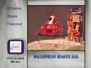 Waterproof Remote Egg Commercial