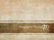 Raspberry Fields Chemise Slideshow